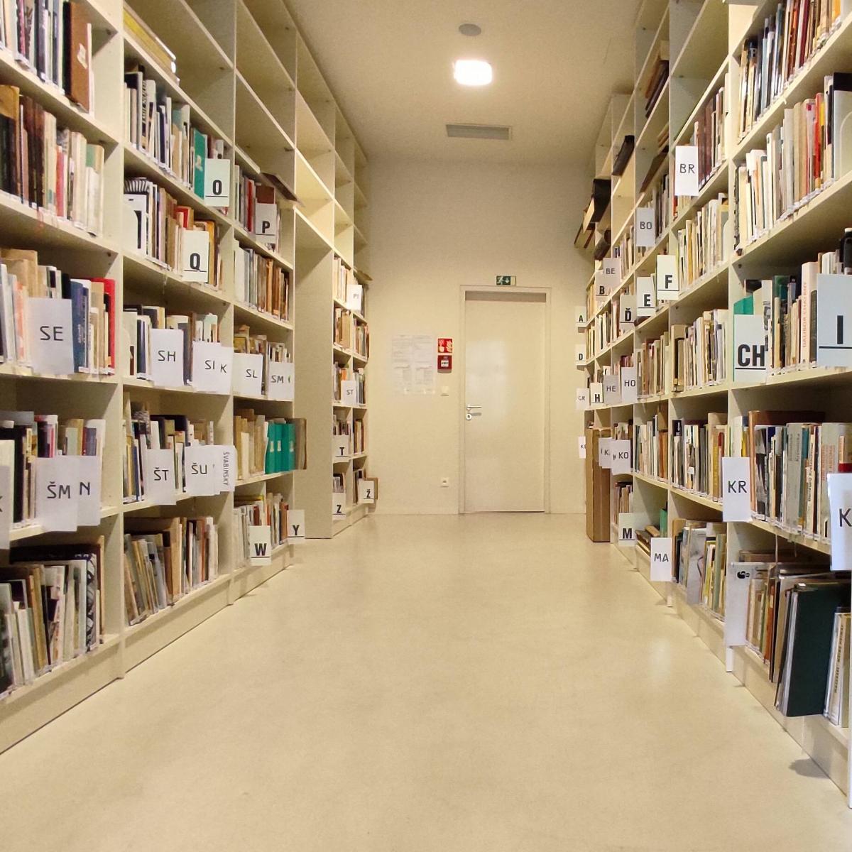 knihovna1.jpg