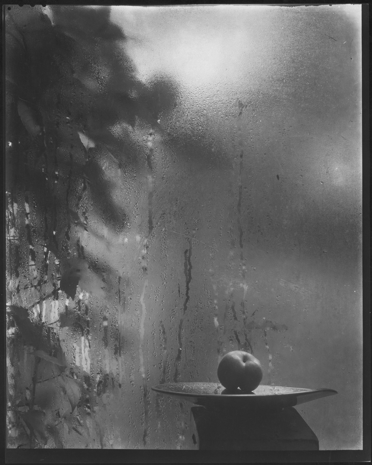 Josef Sudek, Still Life by the window of my studio